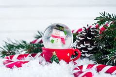 snow globe with snowman on festive background (lyule4ik) Tags: snowman holiday christmas merry cane candy snow background globe festive tree decoration ornament ball xmas white seasonal celebrate celebration snowflake season winter december joy glass cold sparkle decorative shiny tradition design silver space decorate magic copy wood red pink contemporary composition outdoor shimmer toy happiness chrystal copyspace bokeh symbol
