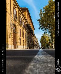 D8B_0207_bis_Corso_Vittorio_Emanuele (Vater_fotografo) Tags: palermo panorama sicilia salvatoreciambra ciambra clubitnikon cielo controluce nikonclubit nikon nuvole prospettiva infinito vaterfotografo