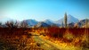 . (Vieparamsberlon.) Tags: landscape mountains autumn country garden wood high saturation photo filtering trees serene late fall