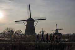 Pushing the pram (eric geers) Tags: ladies pram kinderdijkje windmill winter kinderdijk zuidholland nederland molen windmills riet reed tegenlicht landschap hollandslandschap dijk dike holland netherlands