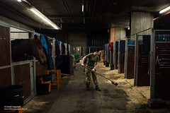 Kings Troop Royal Horse Artillery stables (Defence Images) Tags: sweeping action animal woman female soldiers identifiable personnel wellington uk locations barracks location london kingstrooproyalhorseartillery ktrha householddivision horseguardsparade horse guards grenadierguards footguards army defence defense british military