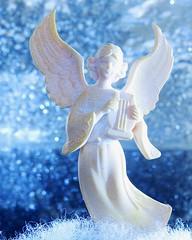 Macro Monday: Christmas Bokeh explored 12/20/2016! (Hayseed52) Tags: macromonday christmasbokeh christmas bokeh angel ornament harp wings winter