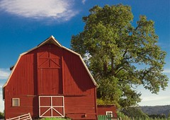 Sauvie Island Barn 3186 A (jim.choate59) Tags: barn sauvieisland red jchoate portlandoregon rural rustic farm on1pics