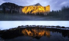 Golden reflections (Dan_Fr) Tags: mist trees fog forest sunset winter water reflection river merced rain beautiful golden goldenhour mountain cliff peak outdoor nationalpark overcast us usa america yosemite northdome california sony a7r adventure clouds