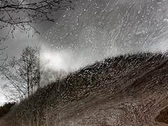 'Hillside' (Canadapt) Tags: reflection stream pond foam flow tree princerupert bc canadapt
