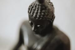 What is ... (Thomas Listl) Tags: thomaslistl color macro closeup brown buddha buddhism meditation life