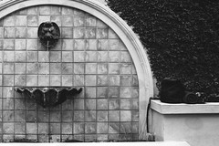AA004 (Terry Christian Photo) Tags: nikon nikonf2 nikonf2photomic photomic kodak trix trix400 hc110 neworleans frenchquarter vieuxcarre vieuxcarré louisiana