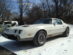 "1979 Pontiac Firebird • <a style=""font-size:0.8em;"" href=""http://www.flickr.com/photos/85572005@N00/18684177743/"" target=""_blank"">View on Flickr</a>"
