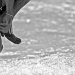 "Windsurfing-world-Cup-2014-Fuerteventura-(4) <a style=""margin-left:10px; font-size:0.8em;"" href=""http://www.flickr.com/photos/127607003@N02/19088905668/"" target=""_blank"">@flickr</a>"