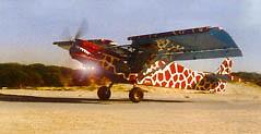 israel-takeoff-small