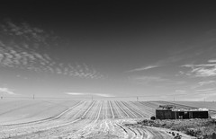 Chartham Harvest (Paul K Martin) Tags: summer sky monochrome field barn mono kent wheat harvest sunny fields derelict balmy oldbarn harvesting chartham derelictbuilding derelictbarn pp6899