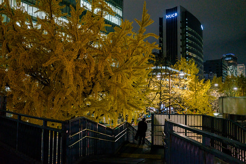 Sakura-Dori, Marunouchi, Nagoya