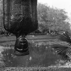 Travelin' Light, Alison Saar (detail) (svendavisson) Tags: sculpture ilford hasselblad monochrome blackandwhite nola neworleans louisiana