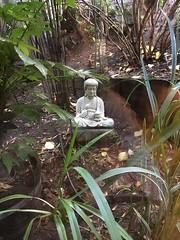 Buddha Bing © Wendy Branzburg