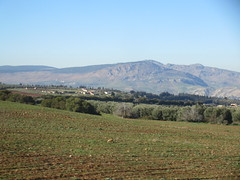 Field and view of mountains, from railway between Meknes and Fez, Morocco (Paul McClure DC) Tags: morocco fez almaghrib dec2016 scenery fèsmeknèsregion