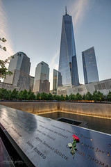 Homage (Abhi_arch2001) Tags: remember remembrance homage red rose do forget 911 memorial new york ny usa united states america freedom tower skyline fountain memory dusk void twin towers city nyc manhattan tribute flower floral