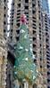 Basílica i Temple Expiatori de la Sagrada Família Dec 30, 2015, 12-034_edit (krossbow) Tags: trafalgarinsider antonigaudí barcelona basílicaitempleexpiatoridelasagradafamília basilicaandexpiatorychurchoftheholyfamily españa spain spanishwonders temploexpiatoriodelasagradafamilia trafalgar photolemur
