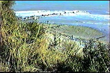 sturmflut 89NDVD_046