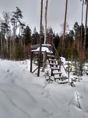 Здесь мог пройти только русский солдат в 1942..