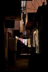 Love Songs on the Radio (audun.bie) Tags: india delhi backyard laundry light