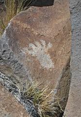 Petroglyphs / Fish Lake Valley Site (Ron Wolf) Tags: archaeology nevada nativeamerican petroglyph footprint anthropology rockart anthropomorph anthromorph