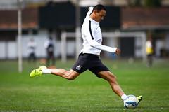 Ricardo Oliveira (Santos Futebol Clube) Tags: ct santos fc rei 2015 treino pel