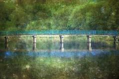 The bicycle bridge through the woods. (Battle14) Tags: holland netherlands textured dordtsebiesbosch memoriesbook