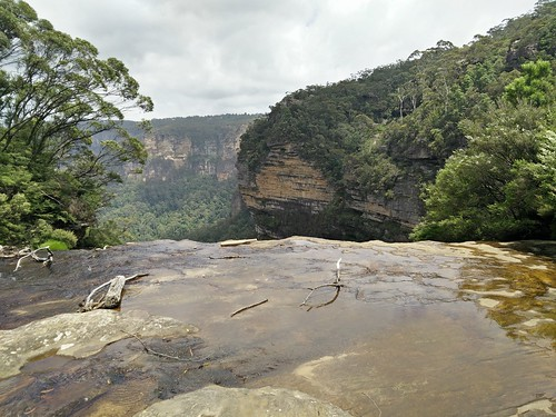 Overlooking Wentworth Falls