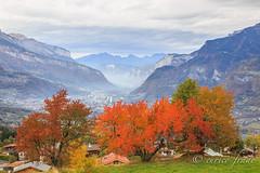 IMG_3025 (Eurico Frade) Tags: alpes france combloux auvergnerhônealpes