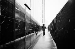 snow day (gato-gato-gato) Tags: 35mm ch contax contaxt2 iso400 ilford ls600 noritsu noritsuls600 schweiz strasse street streetphotographer streetphotography streettogs suisse svizzera switzerland t2 zeiss zueri zuerich zurigo z¸rich analog analogphotography believeinfilm film filmisnotdead filmphotography flickr gatogatogato gatogatogatoch homedeveloped pointandshoot streetphoto streetpic tobiasgaulkech wwwgatogatogatoch zürich leicamp mp leica manualfocus manuellerfokus manualmode rangefinder messsucher black white schwarz weiss bw blanco negro monochrom monochrome blanc noir strase onthestreets mensch person human pedestrian fussgänger fusgänger passant zurich