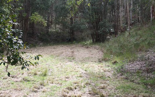 Lot 2 Blue Wren Lane, Wyong Creek NSW 2259