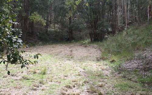 Lot 2 Blue Wren Lane, Wyong Creek NSW 2259