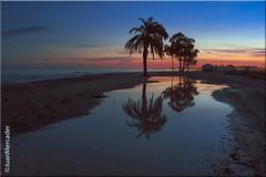 Playa Los Bajos (juanmerkader) Tags: seascape sea spain seascapes sunset sky water waterscapes almería andalucía andalusia arena aguadulce agua nikon nikond750 sand reflejos travel roquetasdemar almerãa