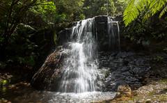 silver magic (Keith Midson) Tags: silverfalls tasmania waterfall water falls mtwellington flow wilderness nature