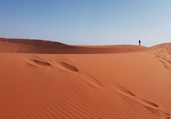 In the desert (laureannehannes) Tags: desert sahara fez morocco man hike hiking nature natural landscape sand sky blue brown walking alone person outdoor travel traveling travelphotography explore wanderlust minimal minimalism