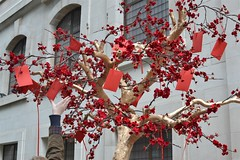 2017-01-28: Wishes To Grab (psyxjaw) Tags: london londonist soho chinese new year chinesenewyear decorations red tree wishes wish envelope handing decoration