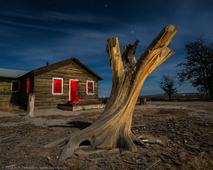 Pruning the Family Tree (dejavue.us) Tags: california ranch longexposure nightphotography house lightpainting abandoned nikon desert fullmoon stump nikkor antelopevalley av mojavedesert d800 1835mmf3545d vle