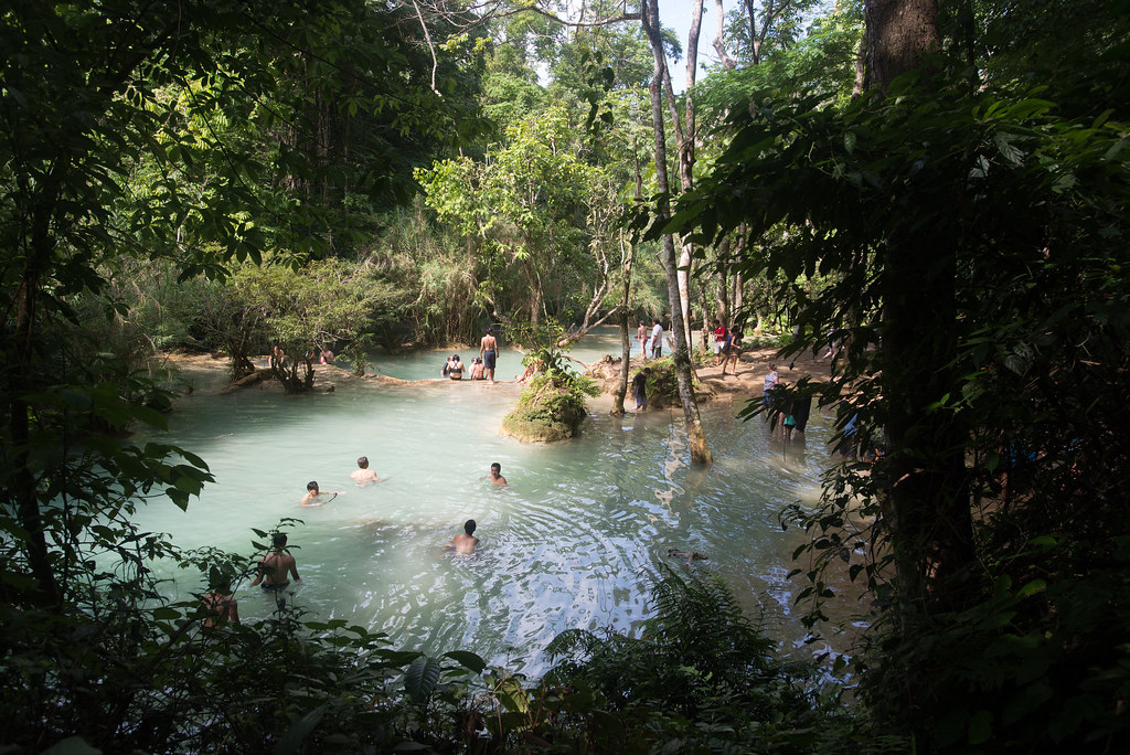 Swimming in Kuang Si Falls