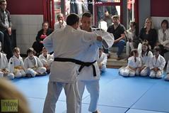 Judo-habay050