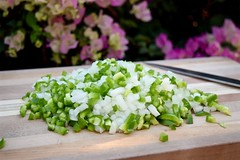 diced onion and green bell pepper (Husbands That Cook) Tags: cooking recipe vegan vegetarian onion greenpepper glutenfree veganomicon snobbyjoes husbandsthatcook