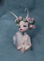 DSC_9118 (olesyagavr) Tags: larry dollchateau