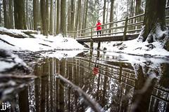 Winter Ripples (Jeremy J Saunders) Tags: mount fromme northshore northvancouver reflection winter pond snow forest jeremyjsaunders jjs nikon d800