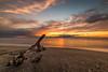 Il tramonto di Marina di Vecchiano 3 (Nico Angeli) Tags: vecchiano mare paesaggi tramonti