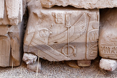 Relief of Horus (Chris Irie) Tags: horus relief dendera egypt temple
