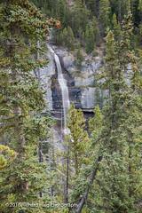 Panther Falls (RichHaig) Tags: trees cpf icefieldsparkway landscape nikonafsnikkor2412014ged waterfalls alberta water banffnationalpark banff canada richhaig pantherfalls nikond800 rocks