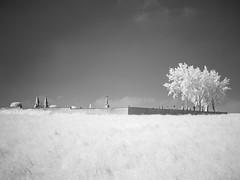 Cemetery II