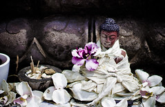 *** (mhofer1800) Tags: flower fleur temple suisse religion contraste 50mm18 boudisme canon100d