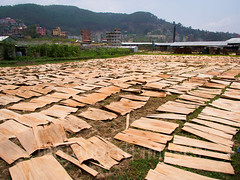 Making plywood (whitworth images) Tags: wood nepal outdoors asia factory sheets kathmandu thin plywood drying manufacturing indiansubcontinent banepa