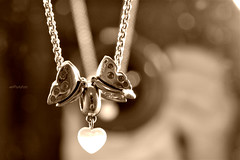 un cuore, due farfalle (alesolofoto) Tags: cuore heart farfalla butterfly ciondolo athome casa