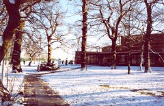 The Grounds (University of Essex - Photographic Archive) Tags: ph36 nature grounds essex campus colour trees snow people sportscentre